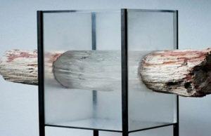 ftc-madeira-transparente-02